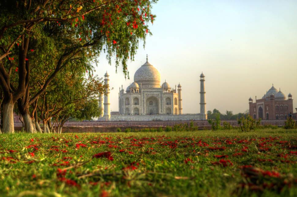 Taj Nature Walk Blooming in Taj Mahal and Agra  - Best Season
