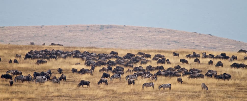 Best time for Ngorongoro Crater in Tanzania
