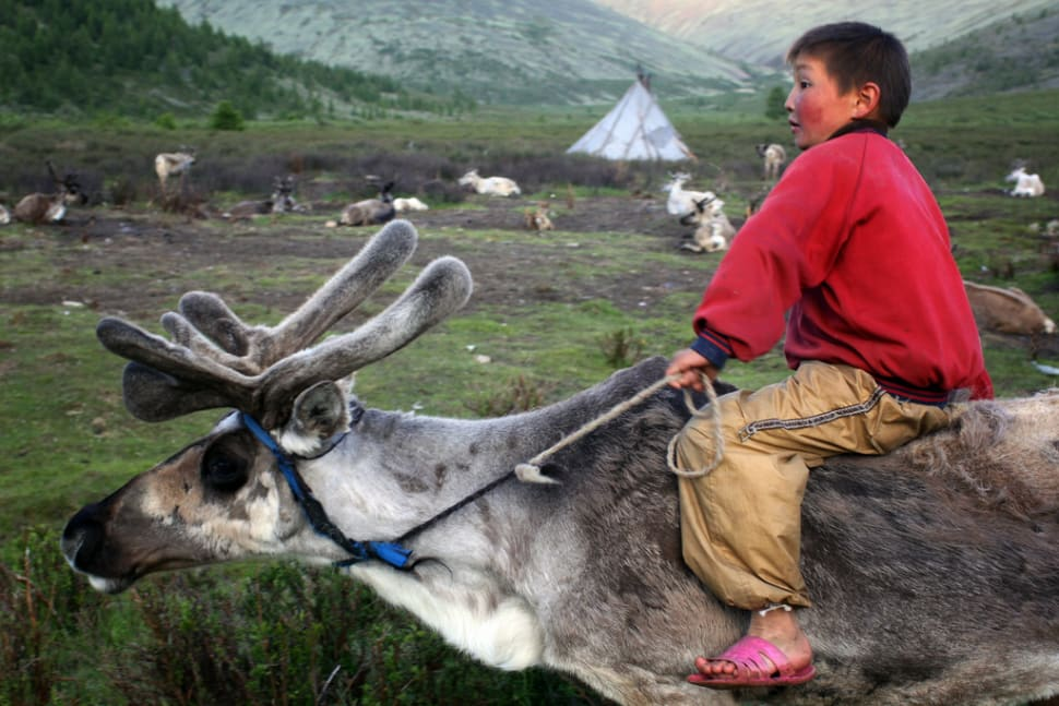 Visiting Tsaatan Tribe in Mongolia - Best Time