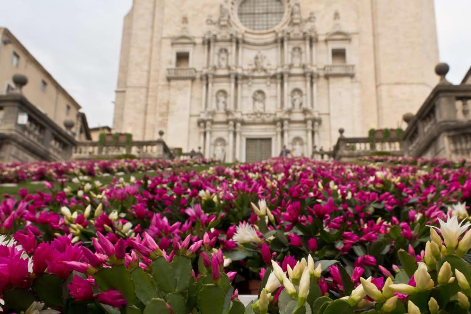 Girona Flower Festival in Spain - Best Time
