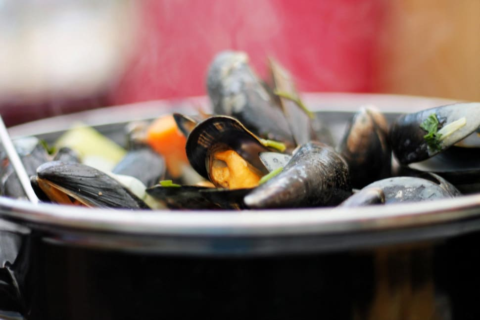 Zeeland Mussels in The Netherlands - Best Time