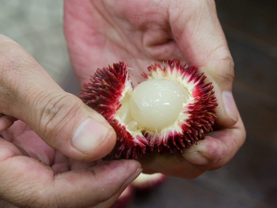 Rambutan in Singapore - Best Time