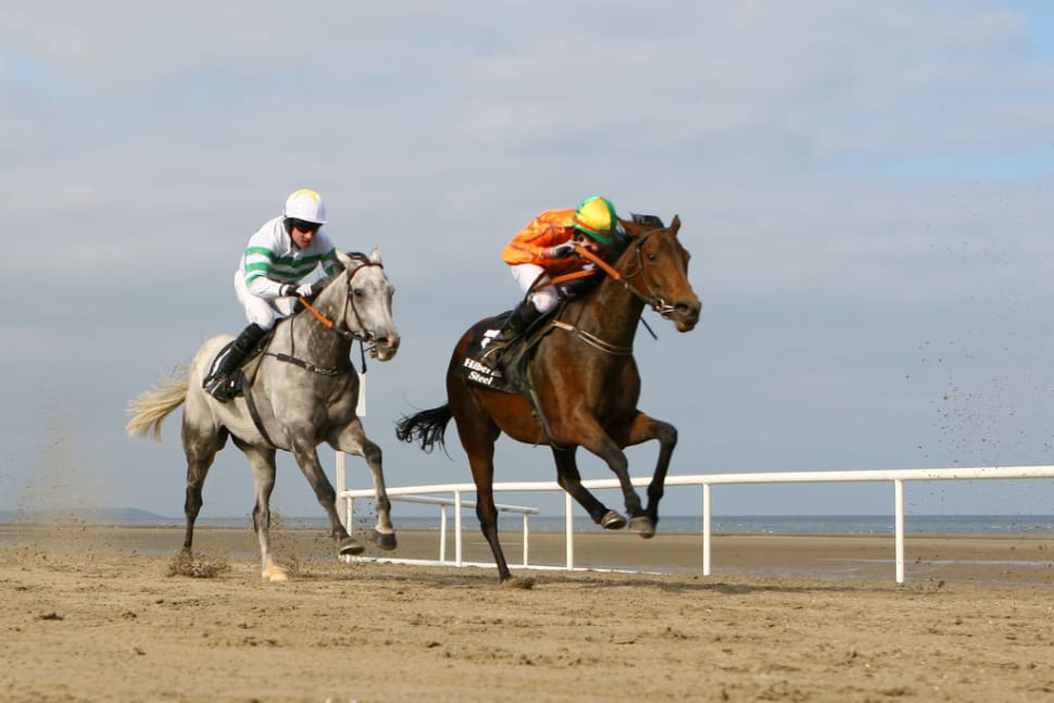 Laytown Beach Races in Ireland - Best Time