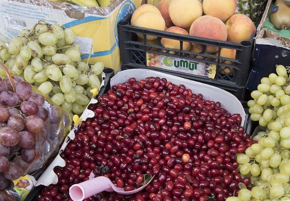 Cornelian Cherries or Drenjine in Montenegro - Best Season