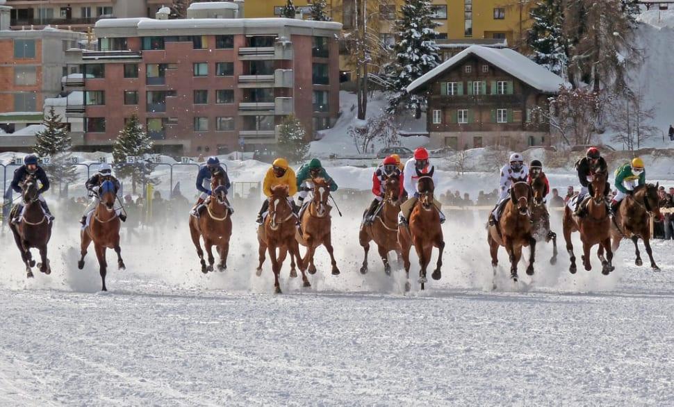 White Turf St. Moritz in Switzerland - Best Time