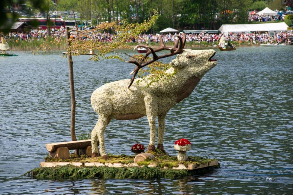 The Narzissenfest in Austria - Best Season