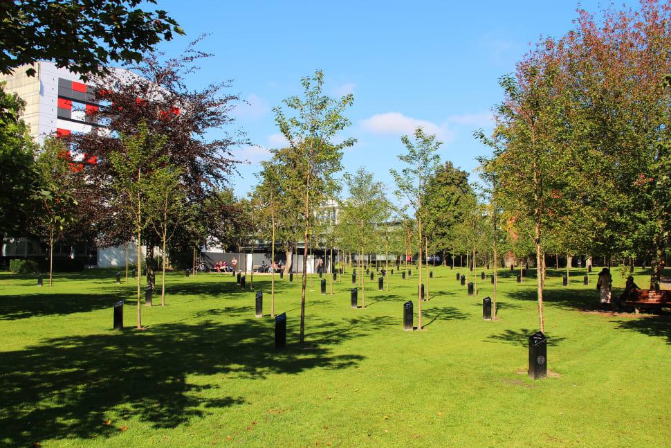 Best time for Singing Trees (Park of Music) in Denmark