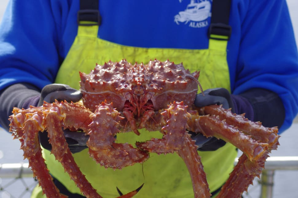King Crab in Alaska - Best Time