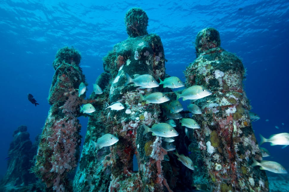 Diving on Isla Mujeres, MX, August 2015