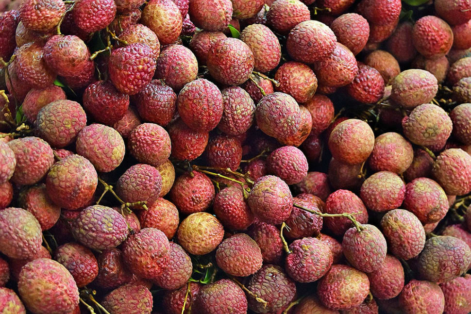 Litchi (Lychee) in India - Best Time
