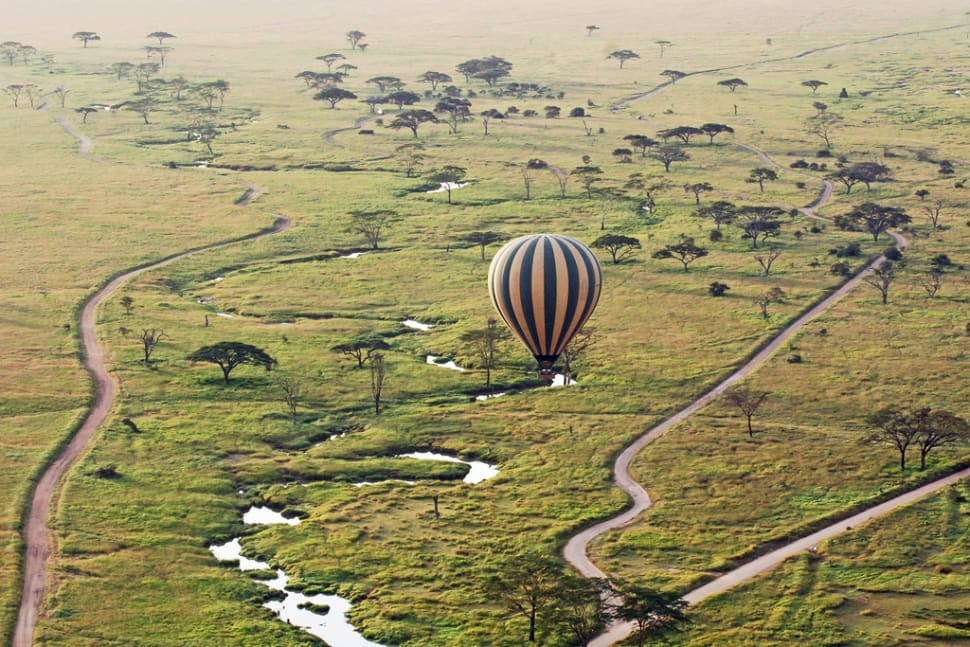 Best time to see Safari in Tanzania