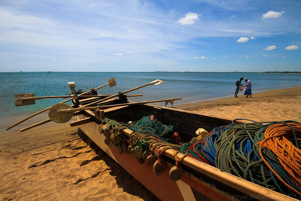 Deep Sea Fishing on East Coast in Sri Lanka - Best Season