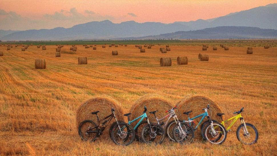 Hay Harvest in Romania - Best Time