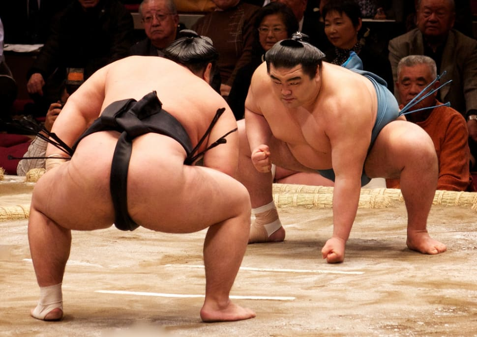 Sumo in Japan - Best Time