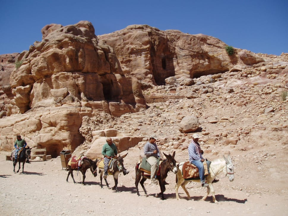 Best time for Donkey Ride in Jordan