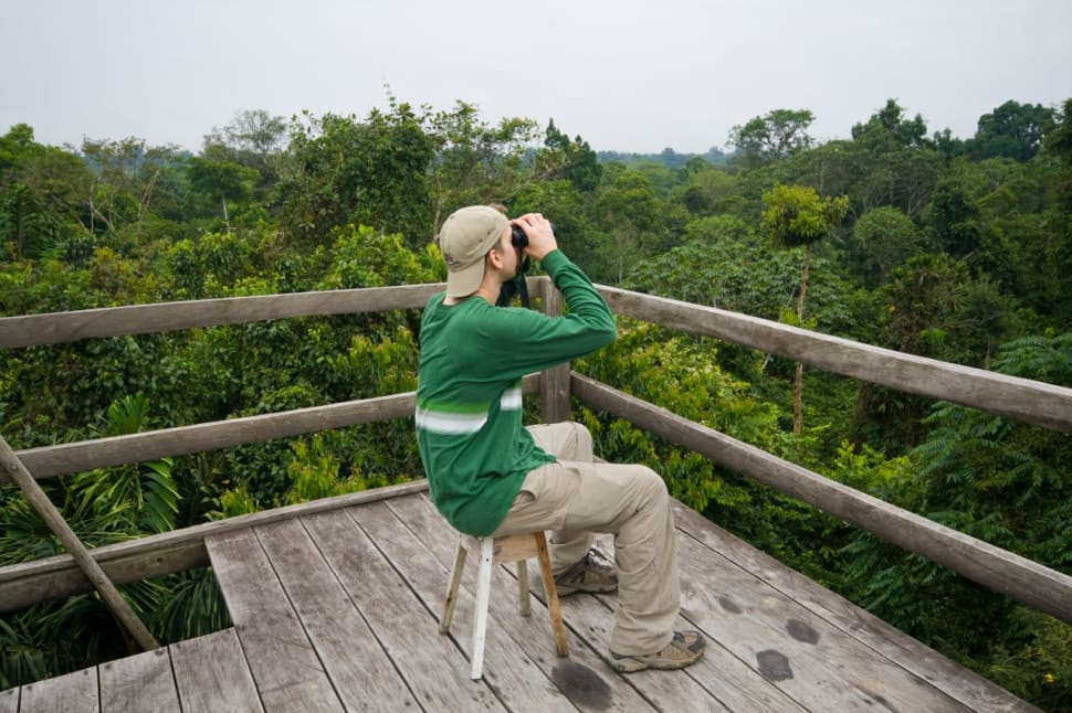 Canopy Watchtower—a 50-60 foot watch tower in the rainforest's canopy.