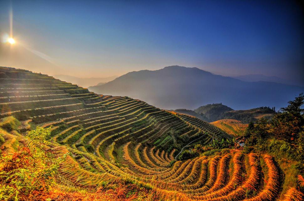 Best time for Longsheng (Longji) Rice Terraces