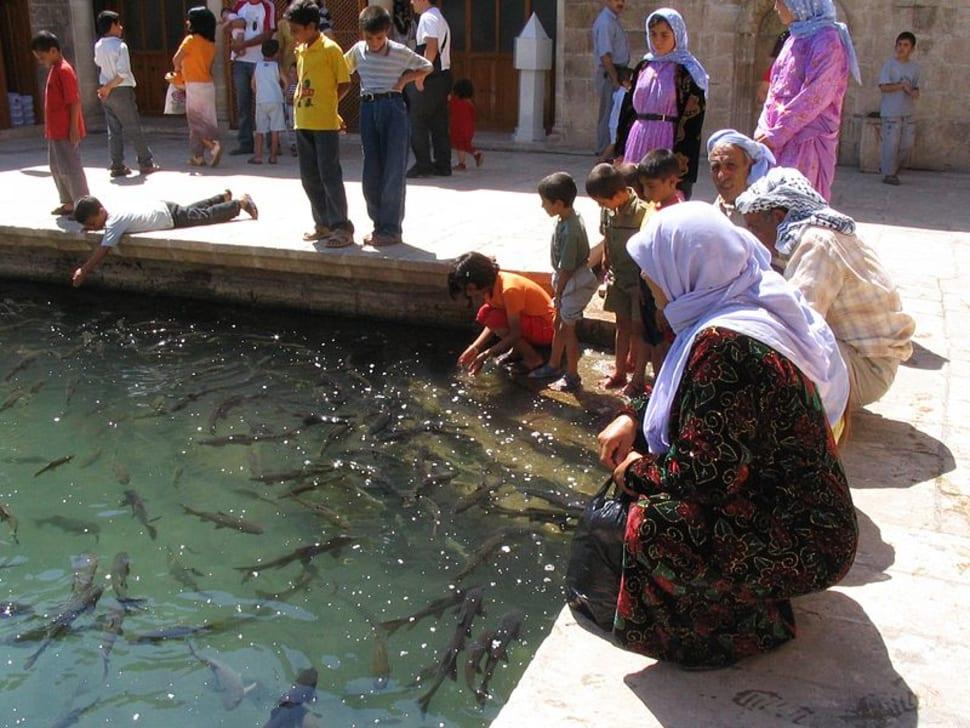 Best time for Balıklı Göl (Abraham Pool) in Turkey