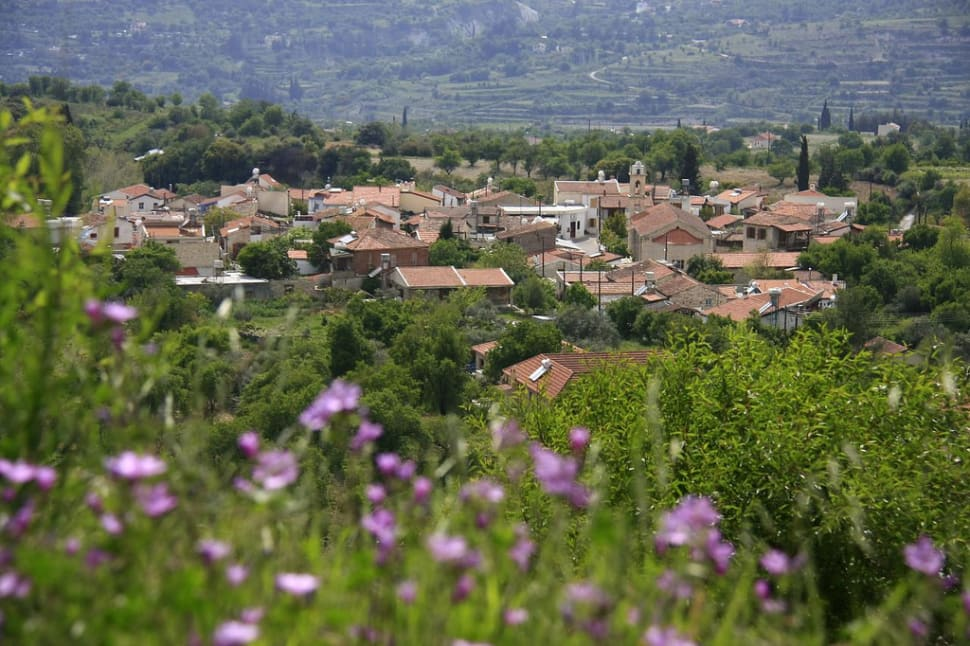 Best time to see Anthestiria or Flower Festivals in Cyprus