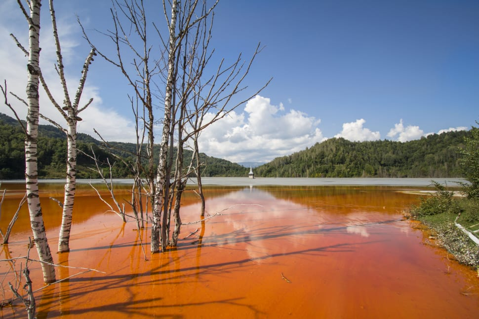 Geamăna Village Drowned in Copper Lake in Romania - Best Season