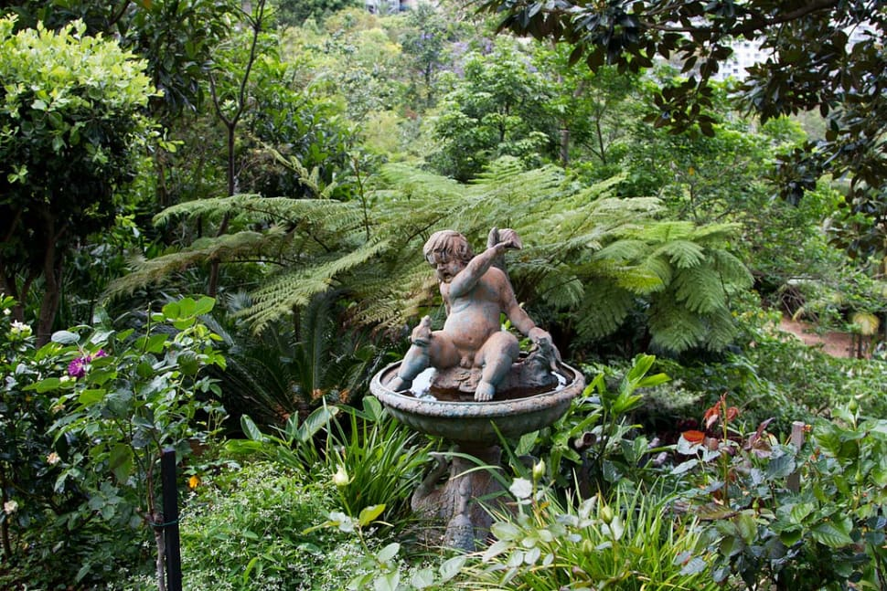 Wendy's Secret Garden in Sydney - Best Season