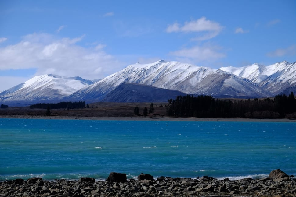 Spring in New Zealand - Best Season