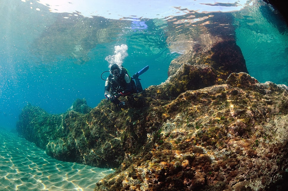Diving and Snorkelling​ in Canary Islands - Best Time