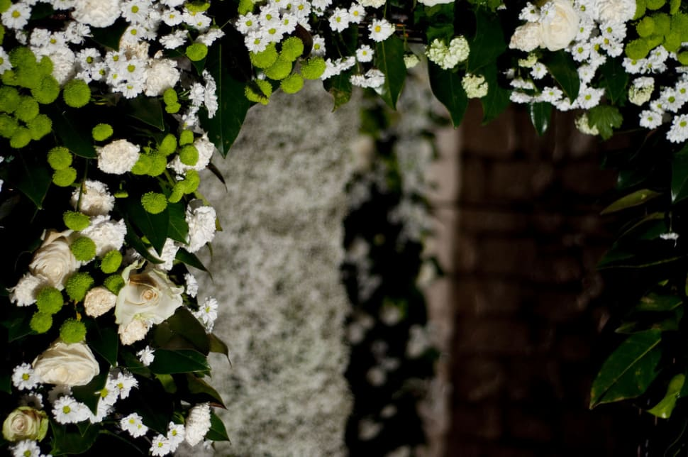 Best time to see Girona Flower Festival