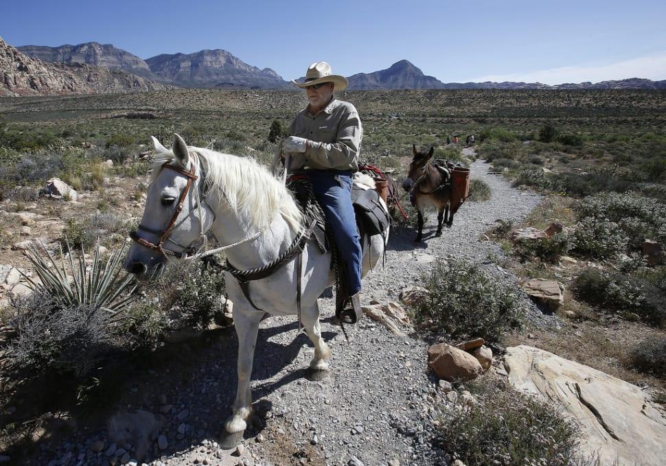 Horseback Riding through Red Rock Canyon in Nevada - Best Season