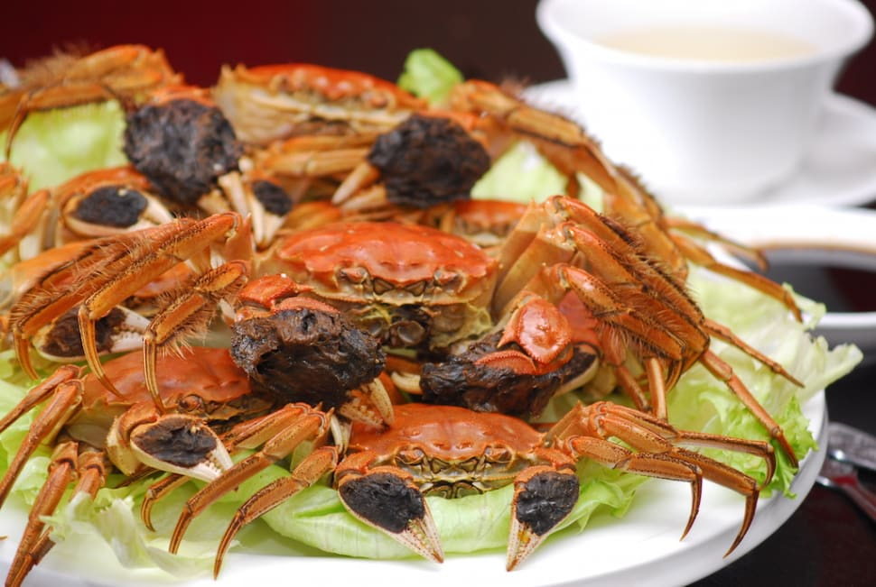Hairy Crabs Season in Singapore - Best Time