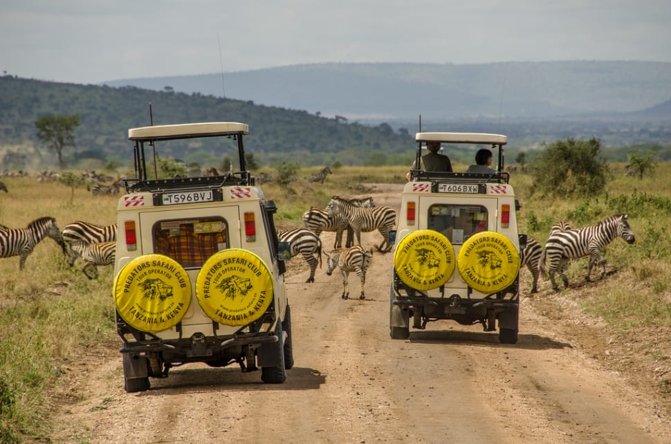 Safari in Tanzania - Best Time