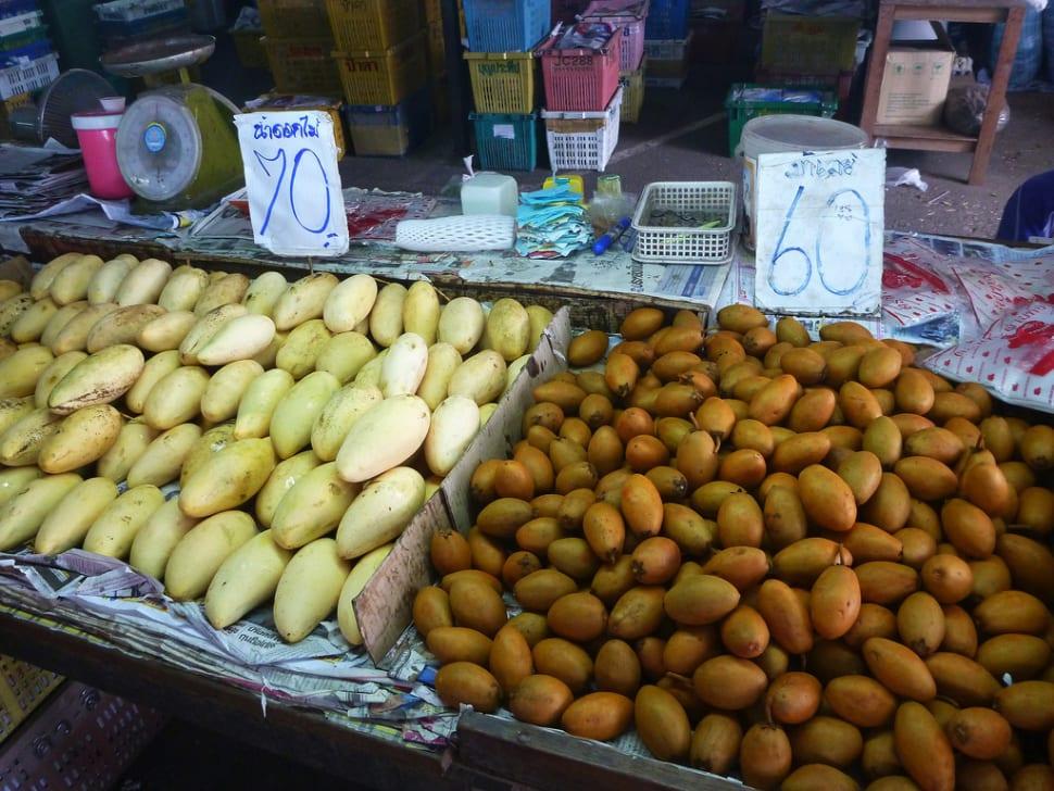 Mango and sapodilla