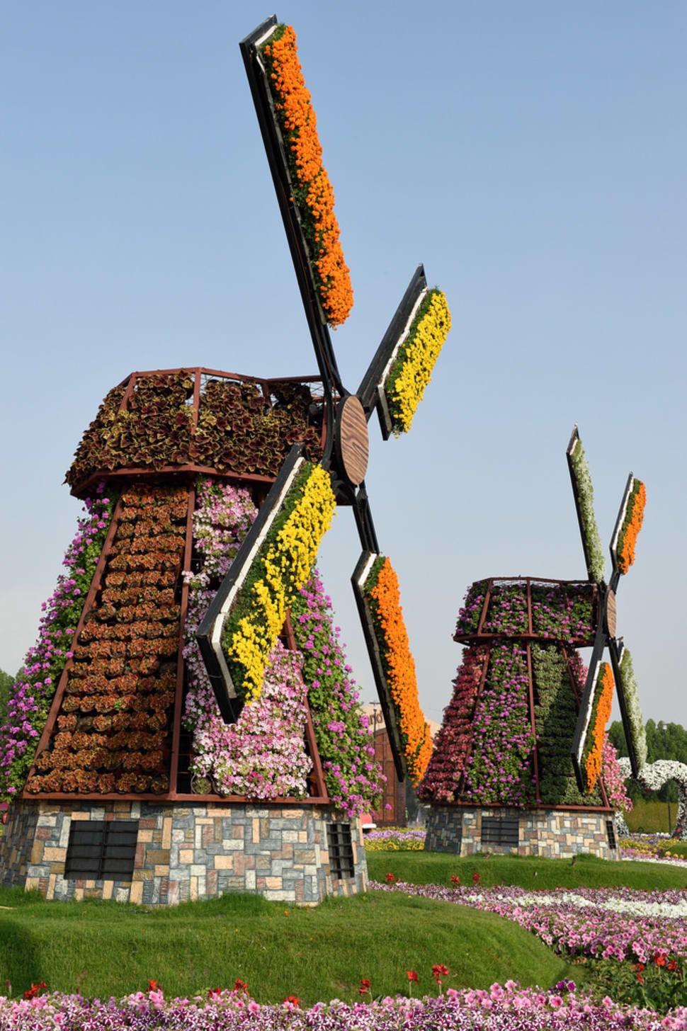 Best time for Dubai Miracle Garden in Dubai