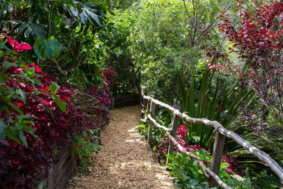 Wendy's Secret Garden in Sydney - Best Time