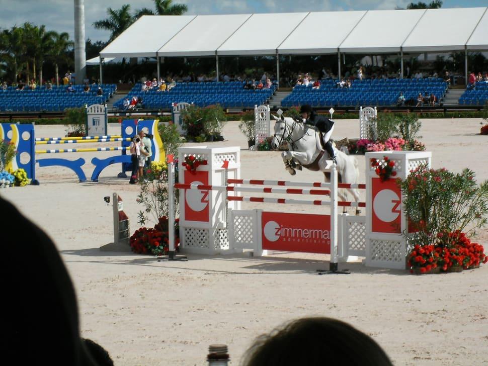 Winter Equestrian Festival in Florida - Best Season