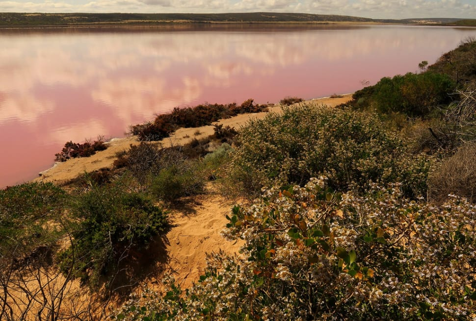 Best time for Hutt Lagoon in Western Australia