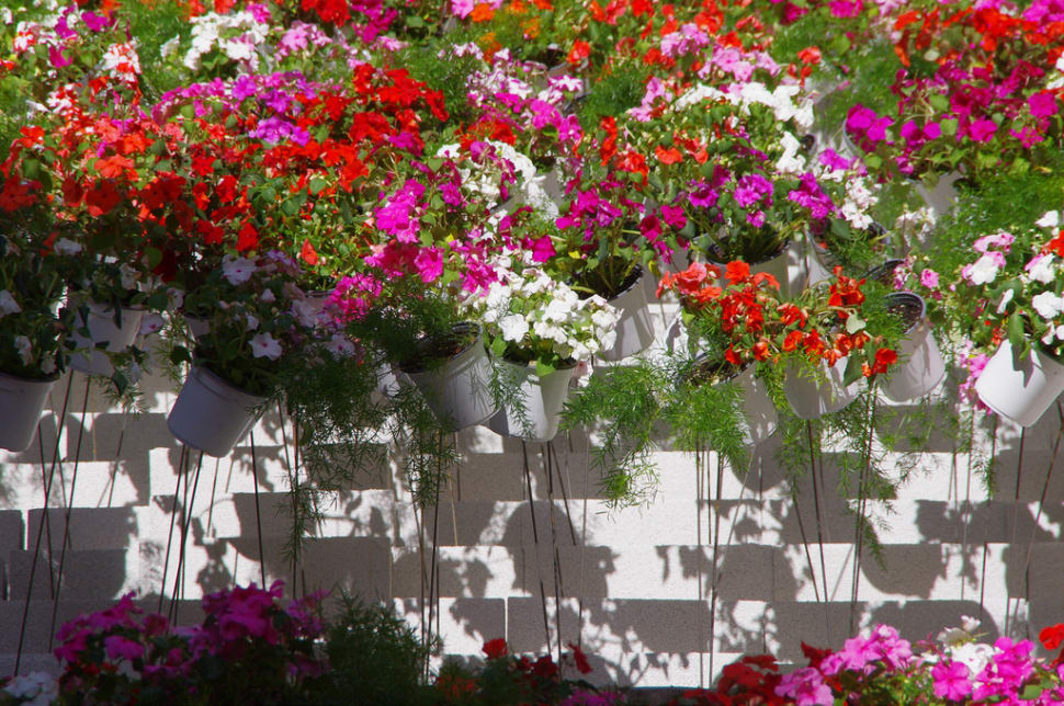Best time to see Girona Flower Festival in Spain