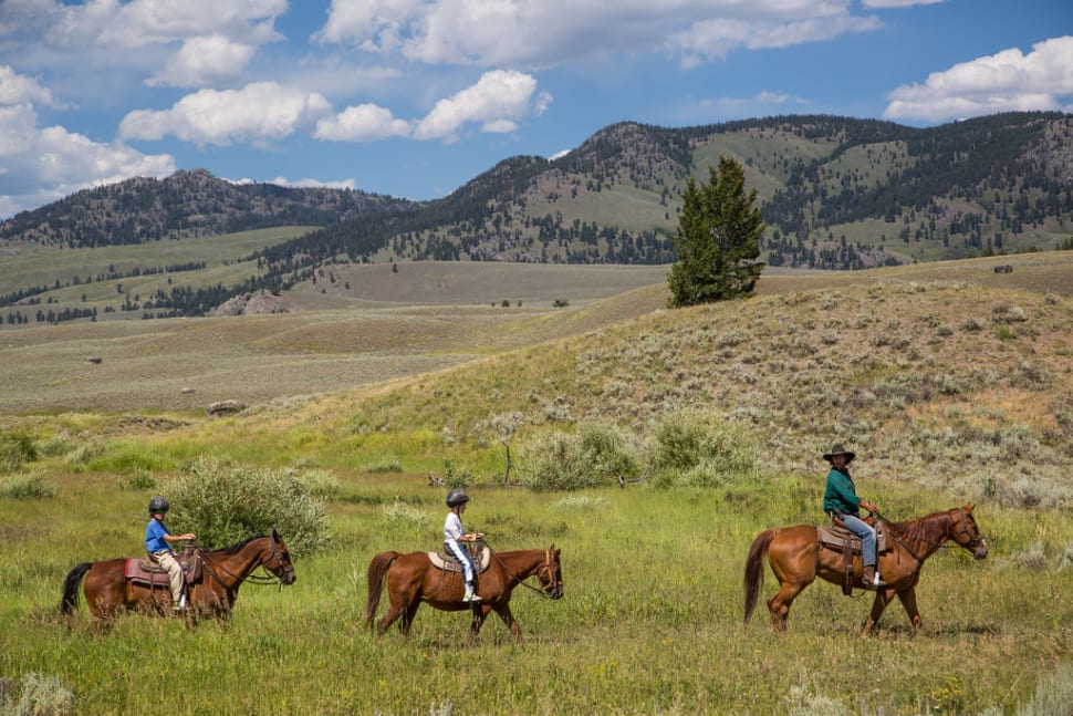Horseback Riding in Yellowstone National Park - Best Time