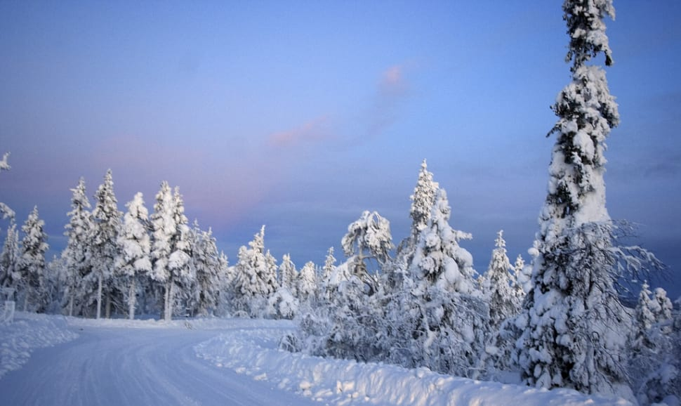 Kaamos in Finnish Lappland