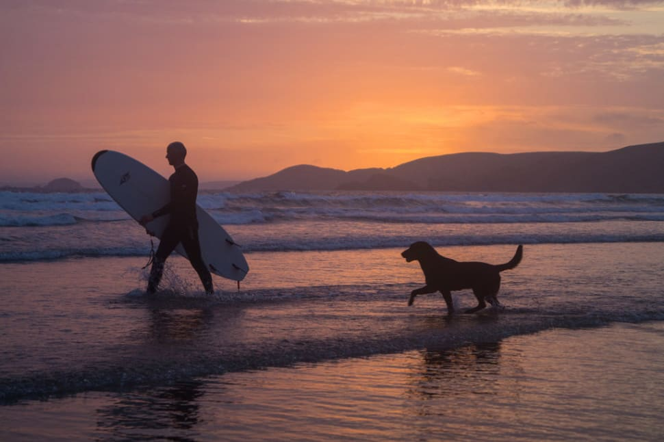 Micky (surfer) and his dog Jake (wannabe surfer), Newgale beach, Pembrokeshire, Wales, UK