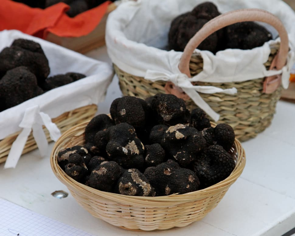 Black Truffle in Provence & French Riviera - Best Season