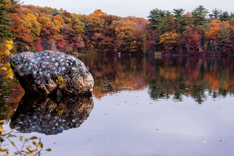 Autumn in Boston - Best Season
