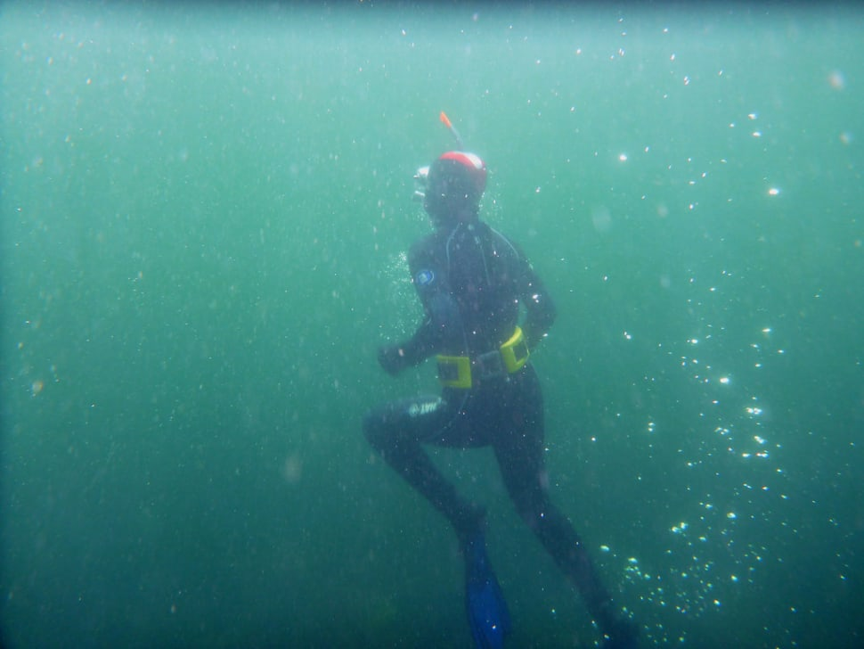 Diving in Scotland - Best Time