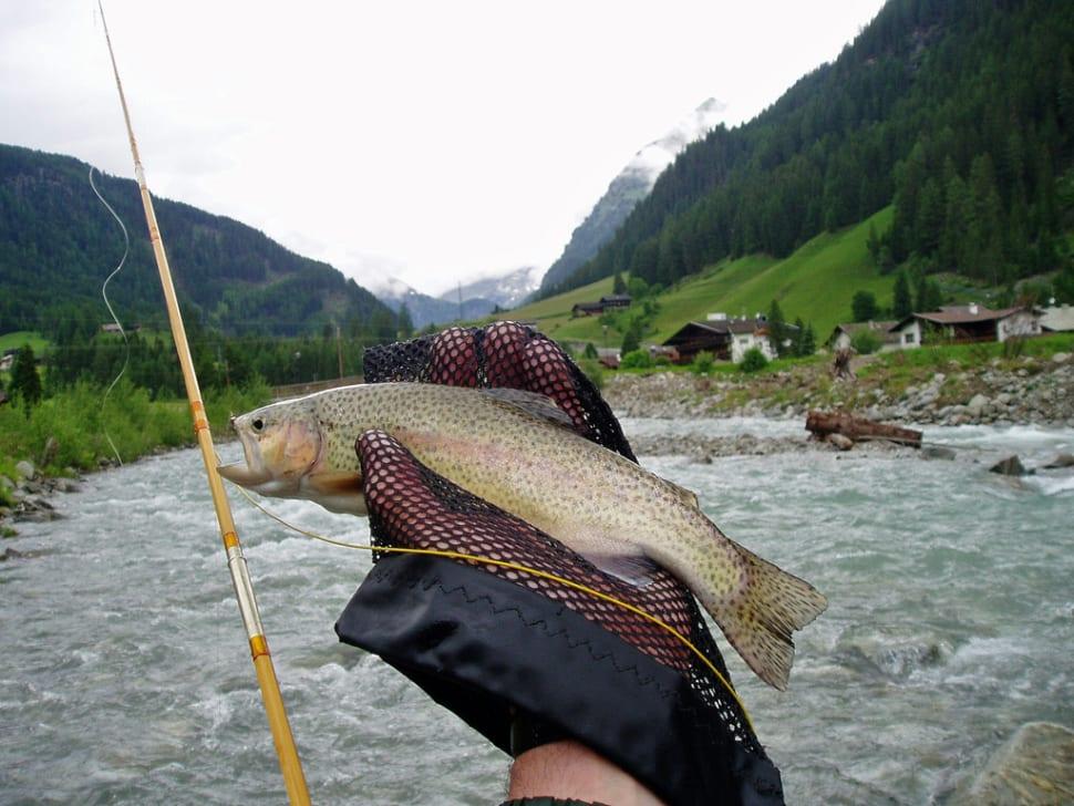 Fishing in Austria - Best Season