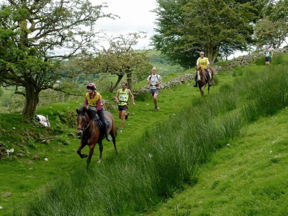 Man v Horse Marathon in Wales - Best Time