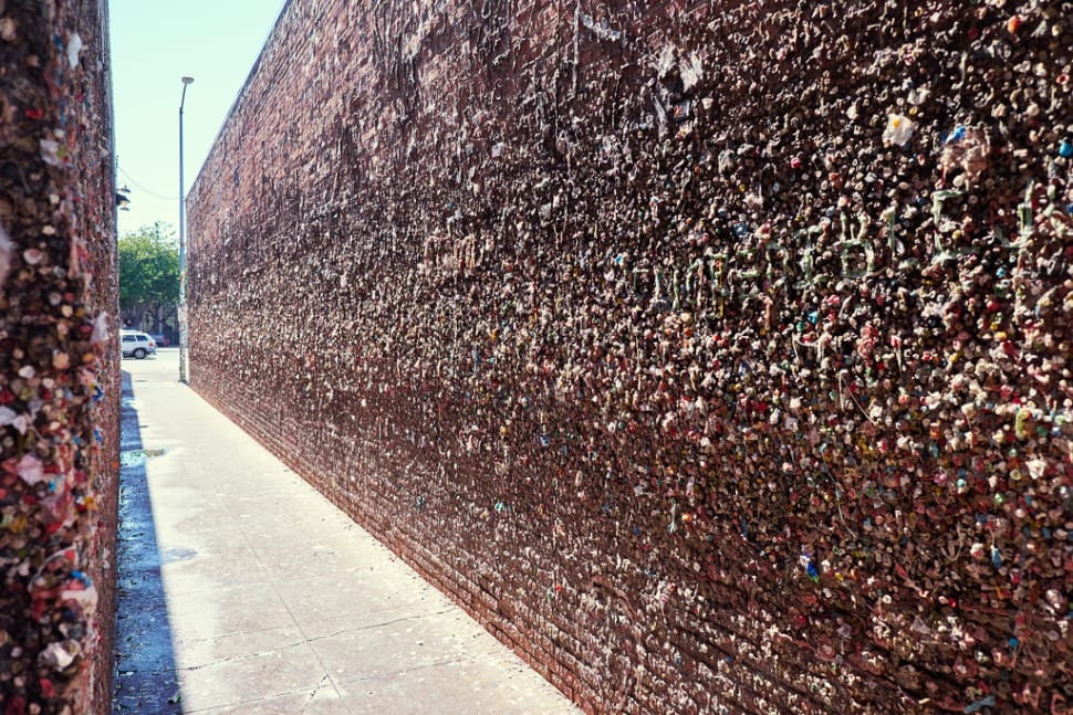 Best time to see Bubblegum Alley in California