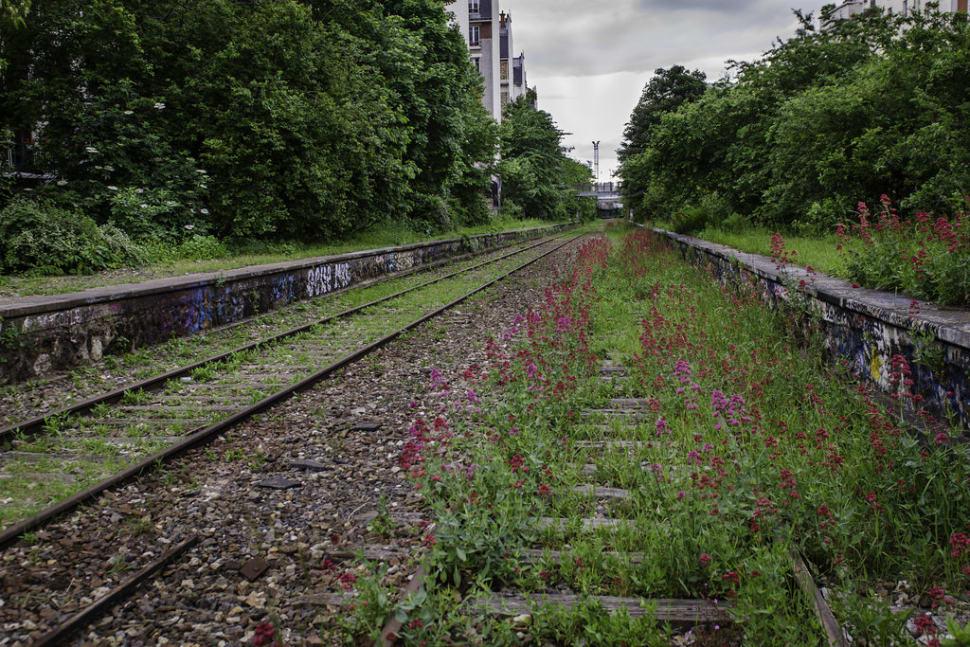 Abandoned Railway Abloom in Paris - Best Season