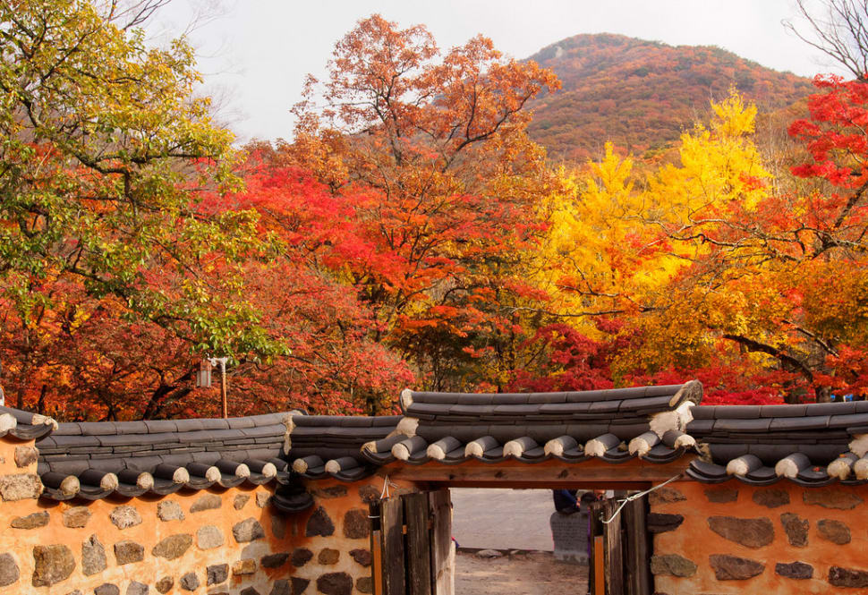 Autumn in South Korea - Best Time