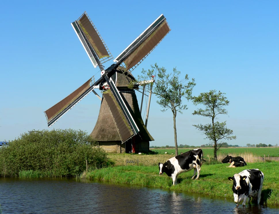 National Mill Day in The Netherlands - Best Time