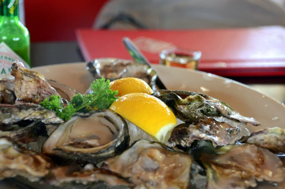 Knysna Oysters in South Africa - Best Time